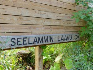 Retki Seelammin laavulle